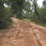 percorso004